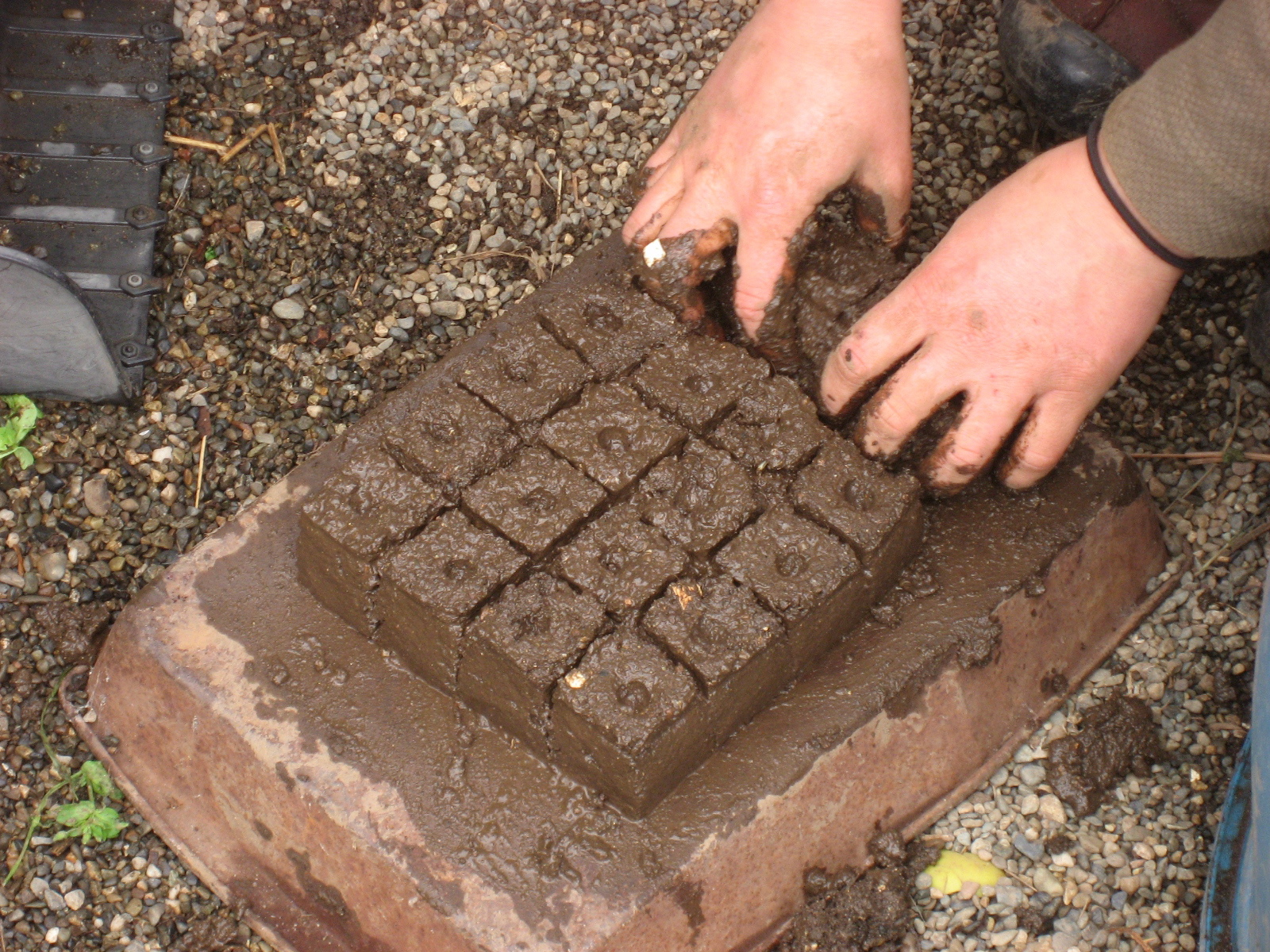 Soil Blocks