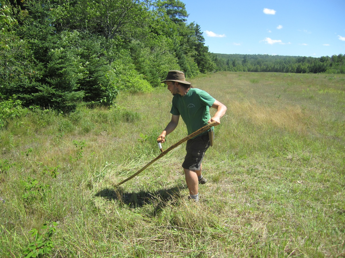 Owen at work in the hay field