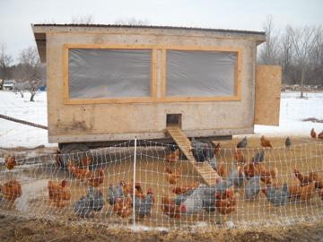 Winterized Castor River Farm Coop