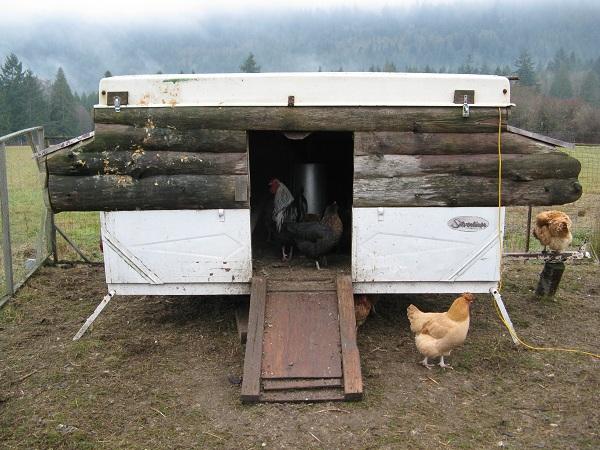 EcoReality Co-op Tent Trailer cum Chicken Coop