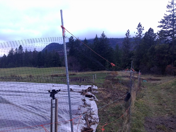 Our approach to deer fencing: flimsy but effective and cheap like borcht. The half inch conduit tubing is $2.75 per ten foot piece (contractor price) and the netting is $20/100 ft at Lee Valley.