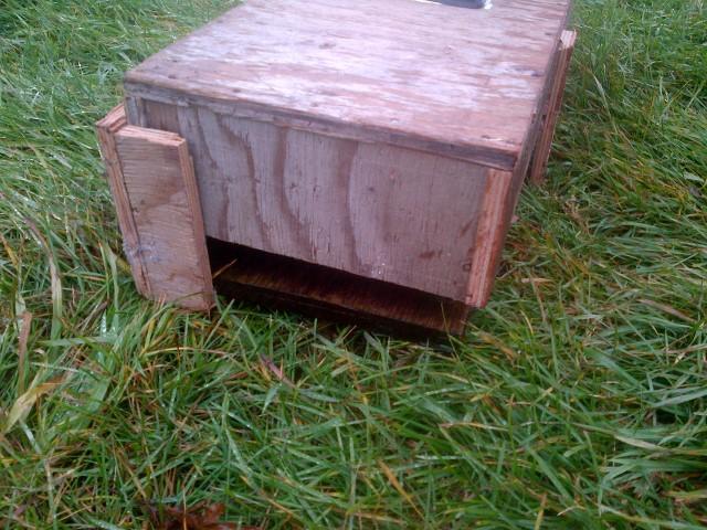 Seeder sitting on soil block tray