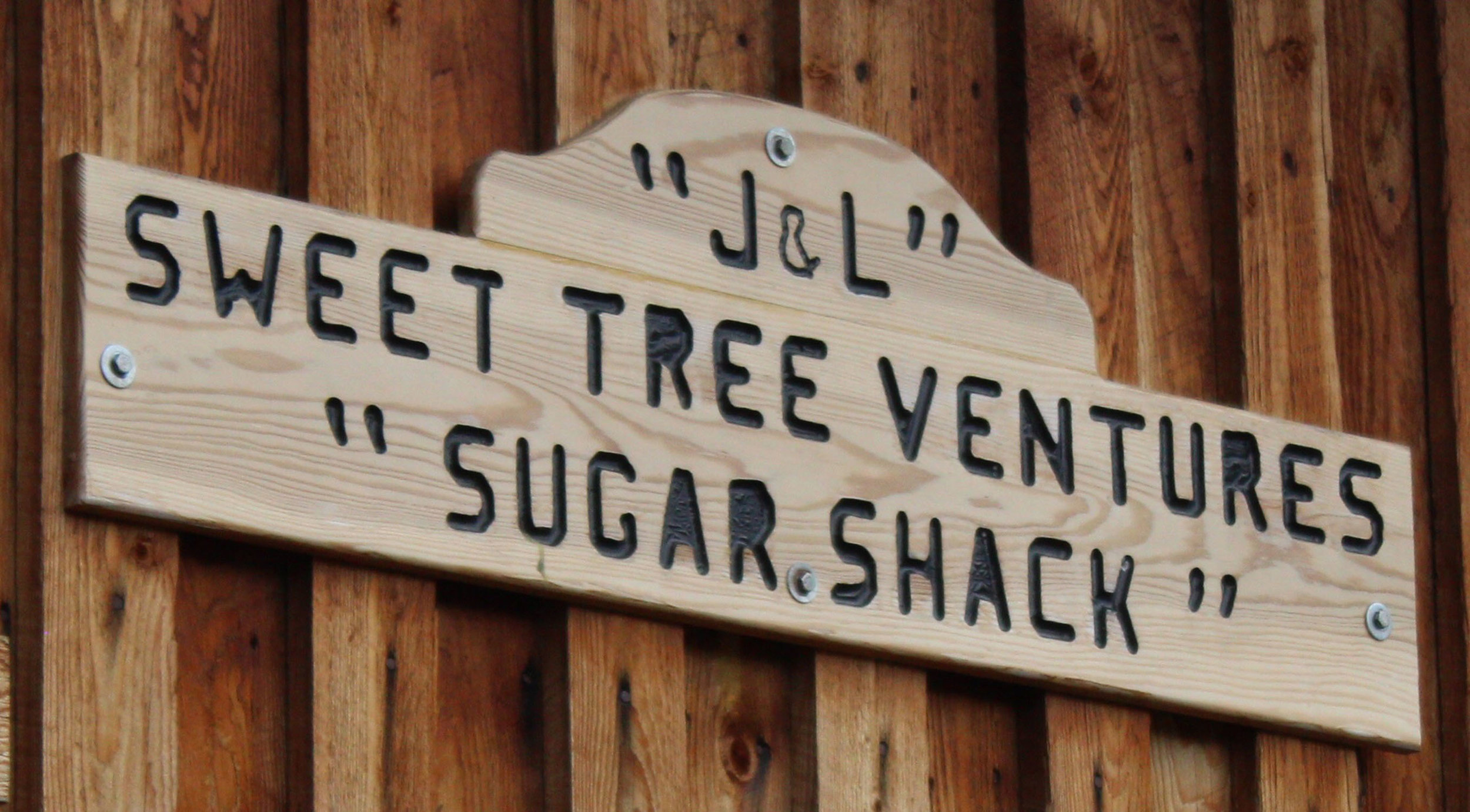 Let's all go to the Sugar Shack where the sap is transformed into liquid gold!