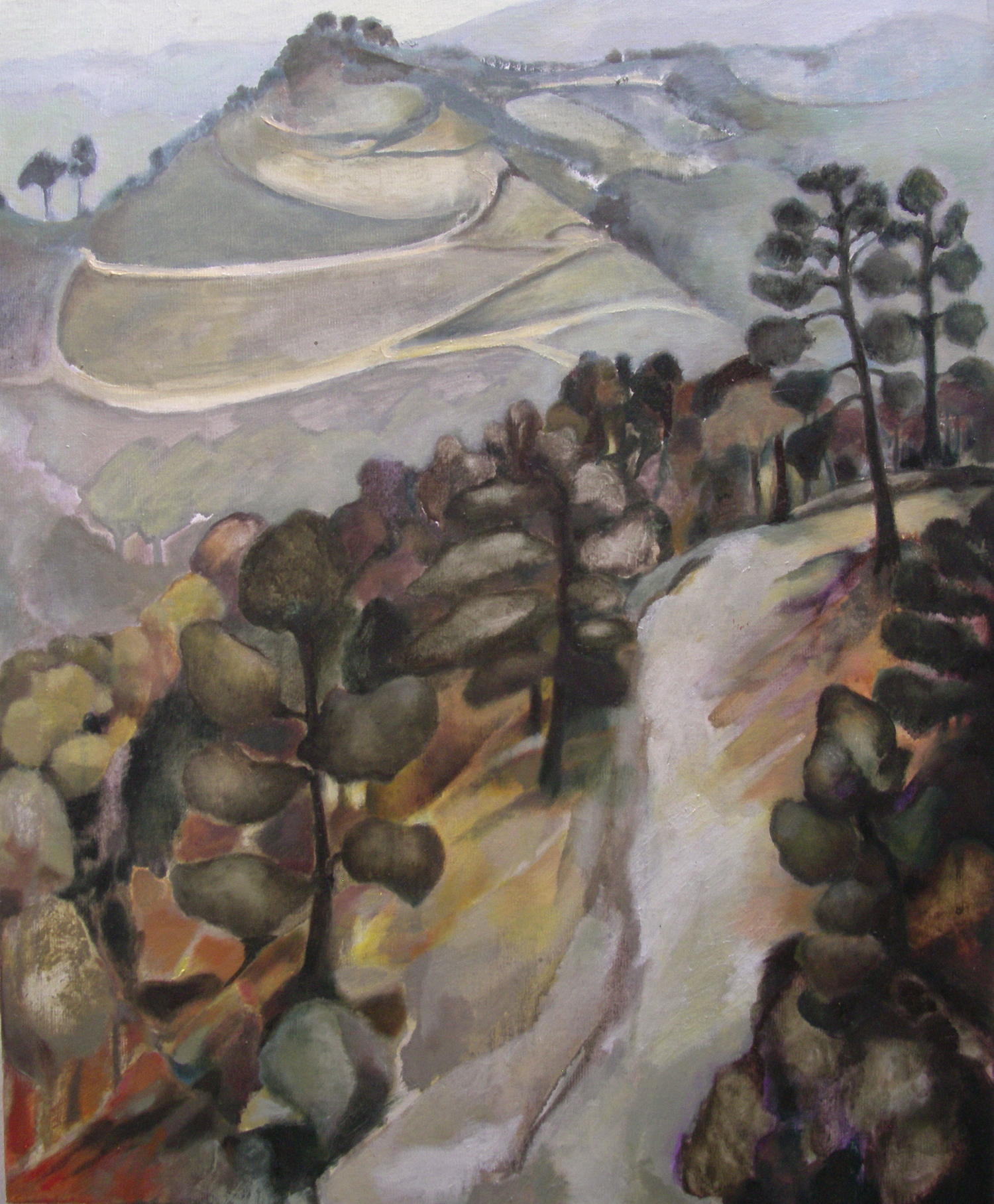 Misty Mountain Track [50x60cm] oil on canvas 2012  Laura Hudson.jpg