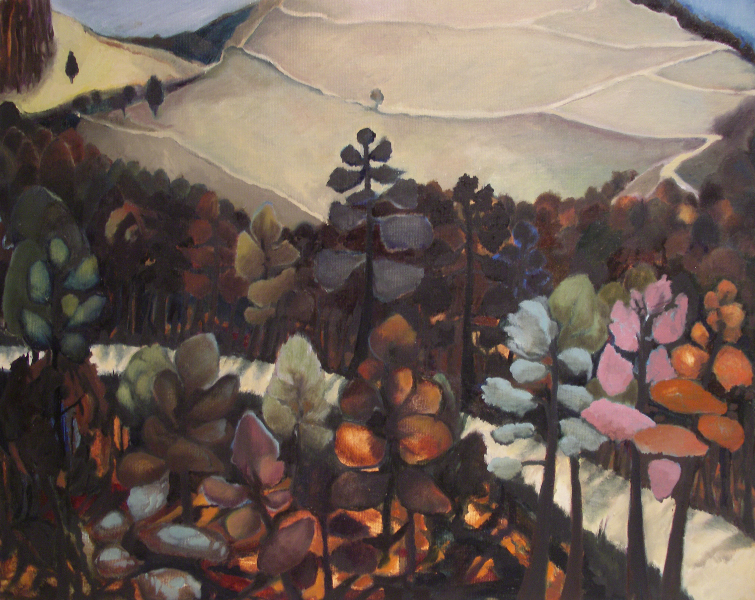 Cévennes Mountain Pass [51x 41cm] oil on board 2012 Laura Hudson.jpg