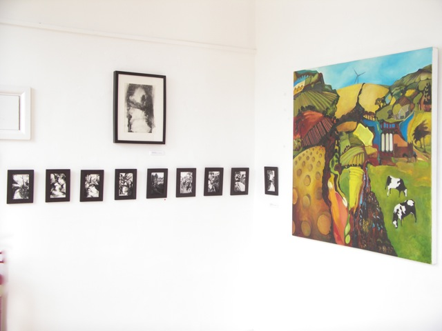 Exhibition Laura Hudson Passing Through June 2014 - 6