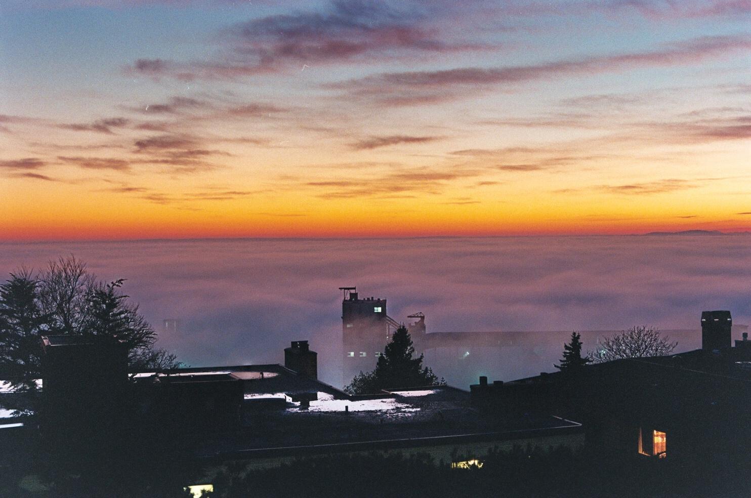 seattle fog.JPG