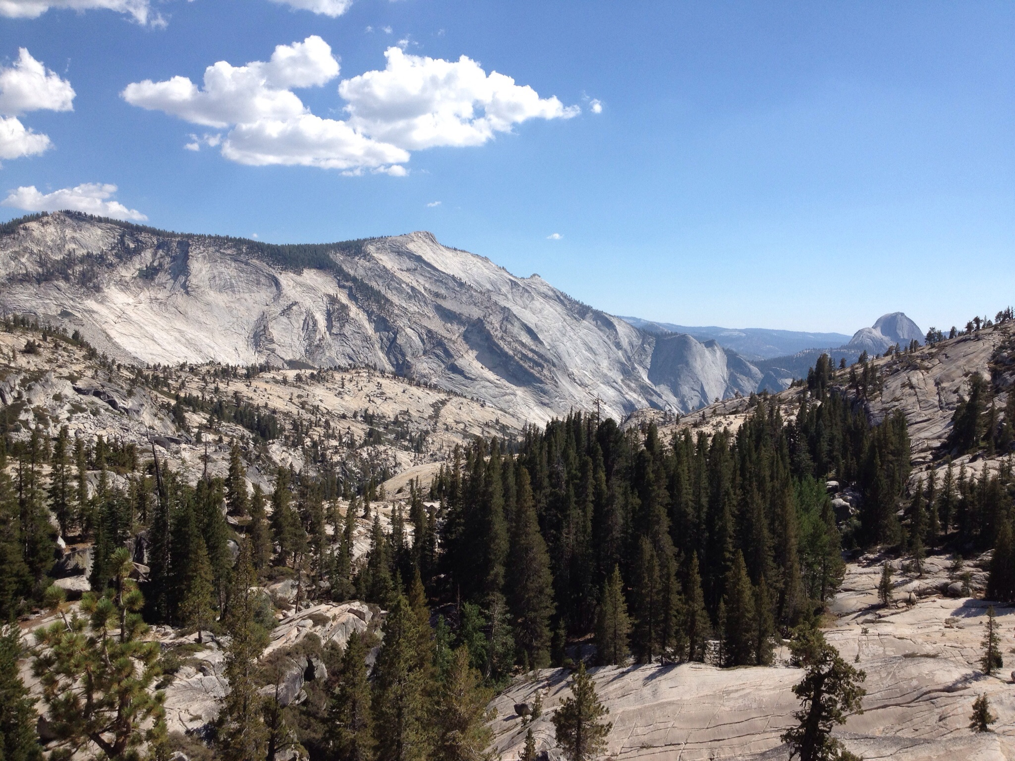 You should definitely come to Yosemite