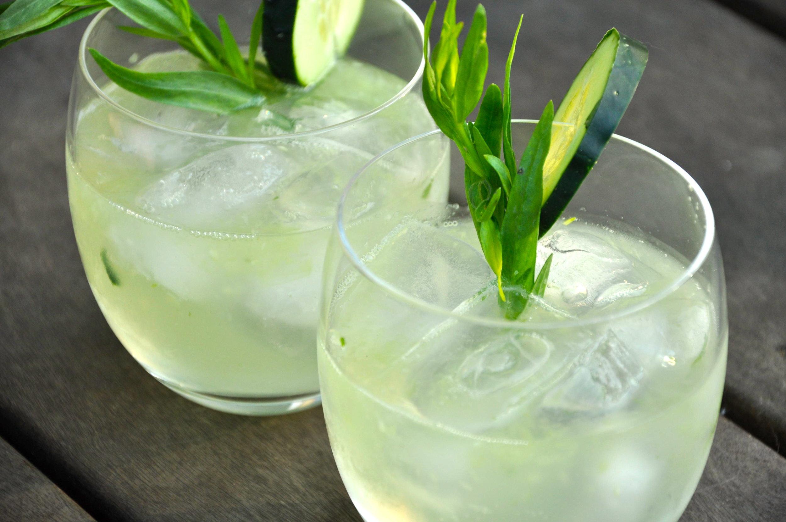 Gin & Tonic (Vodka & Tonic) Cocktail - Photo: RecipeHubs