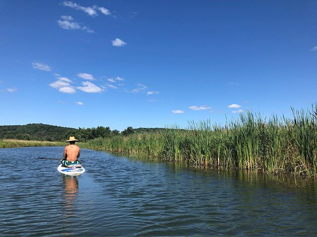Afternoon paddle delight with @gabrieltempesta #lakememphremagog