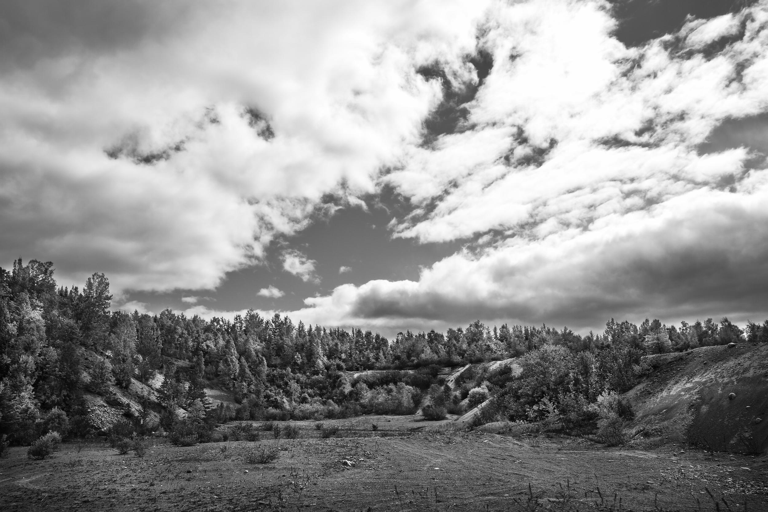 La nature reprend ses droits sur une ancienne carrière près de Waswanipi