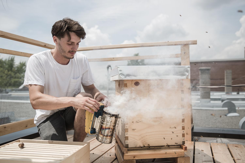 Étienne Lapierre prépare le fumoir avec lequel il distribura un peu de fumée dans la ruche. La fumée déclenche chez les abeilles une peur instinctive de destruction imminente de la ruche, ce qui les emmene à se gaver immediatement de miel. Pendant qu'elles se gavent de miel, elles se préocuppent beaucoup moins de l aprésence des mains intrusives de l'apiculteur.