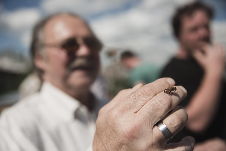 Un des usagers de l'Accueil Bono, qui manipule régulièrement les ruches, sous la supervision d'Alvéole.