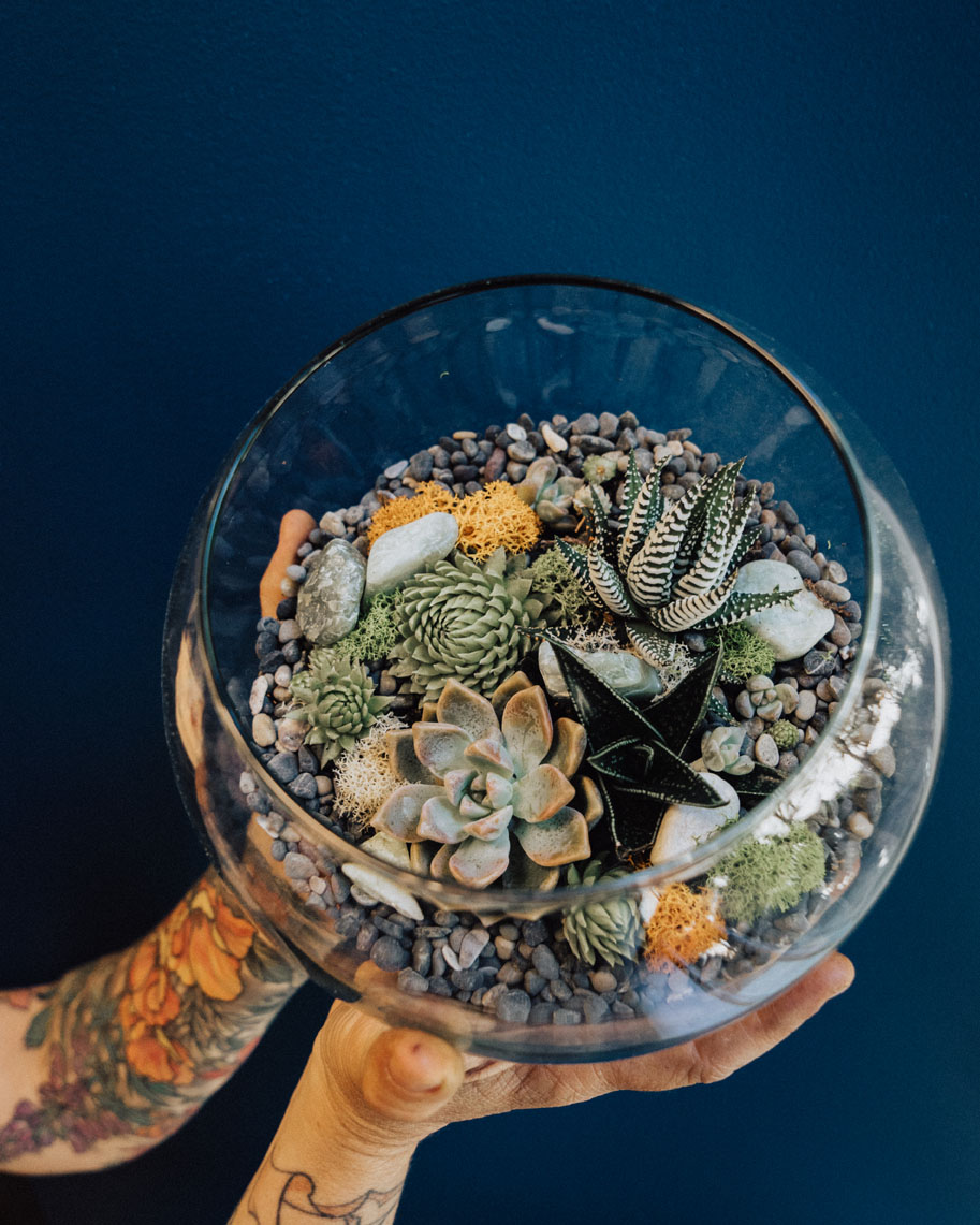 Terrarium Class!!  Succulents, rocks, moss and objects make for amazing mini-gardens
