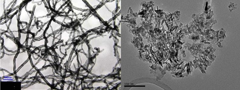Figure 1: TEM images of MWCNTs (left) and ANPs (right). MWCNTs photo credit: Cheap Tubes, Inc.