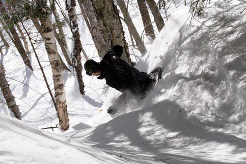 Deep powder and trees are no problem here