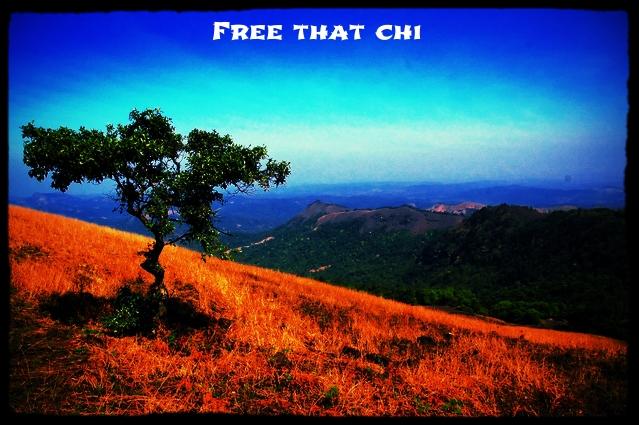 free that chi.jpg