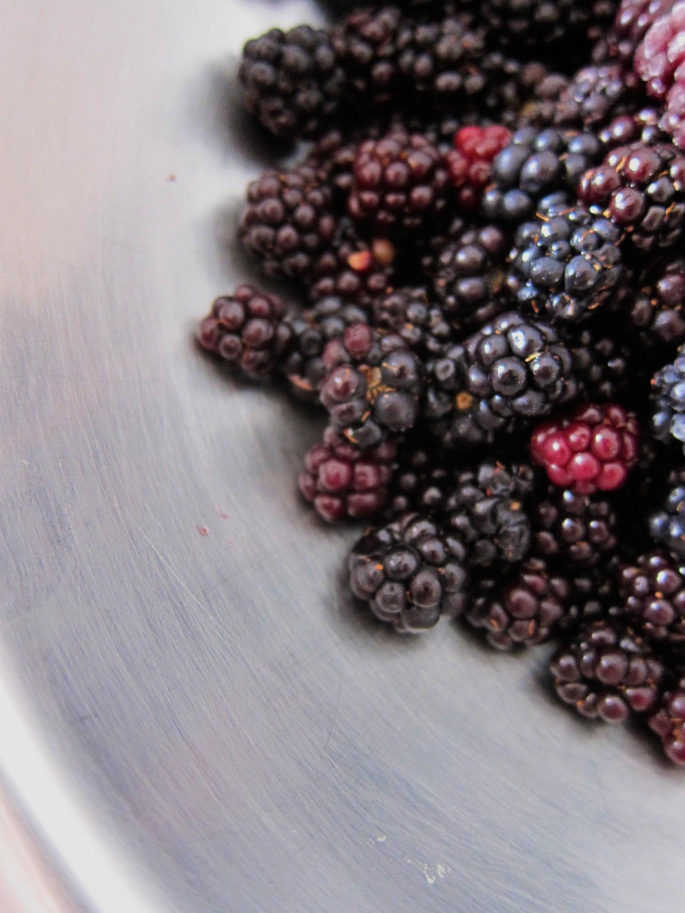 blackberry_19.jpg