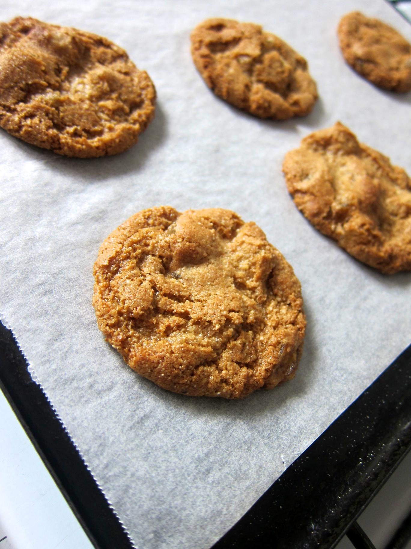 Cookie_05.jpg