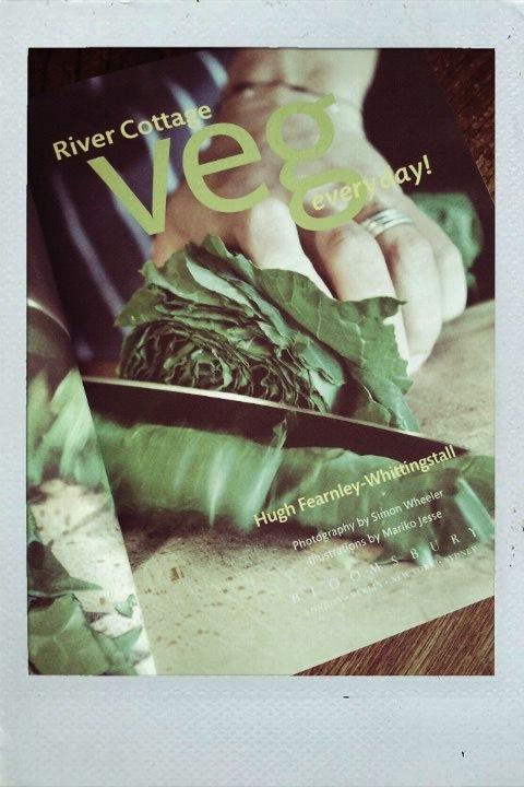 01 veg_everyday.jpg