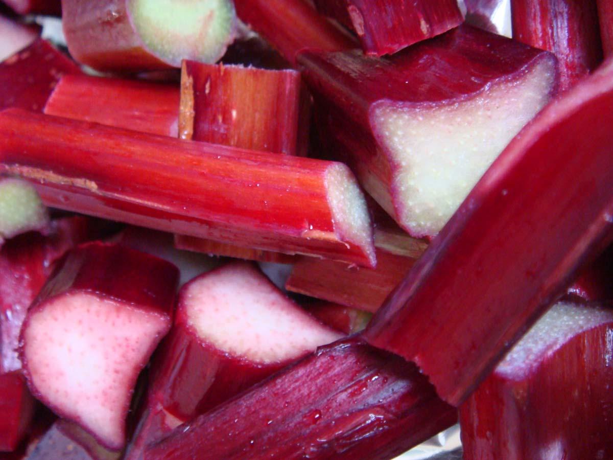 rhubarb1.jpg