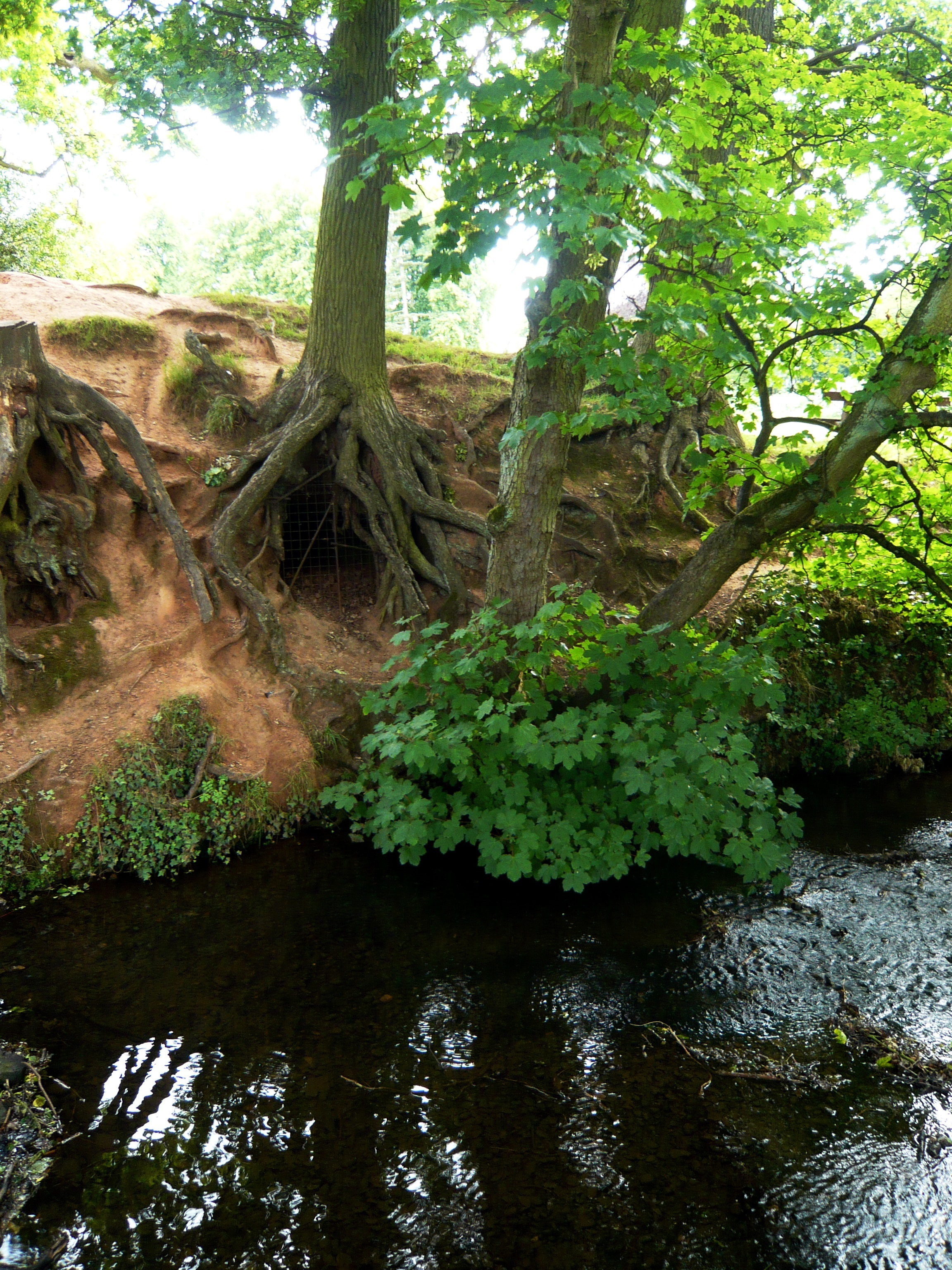 nature sk kayss (6).JPG