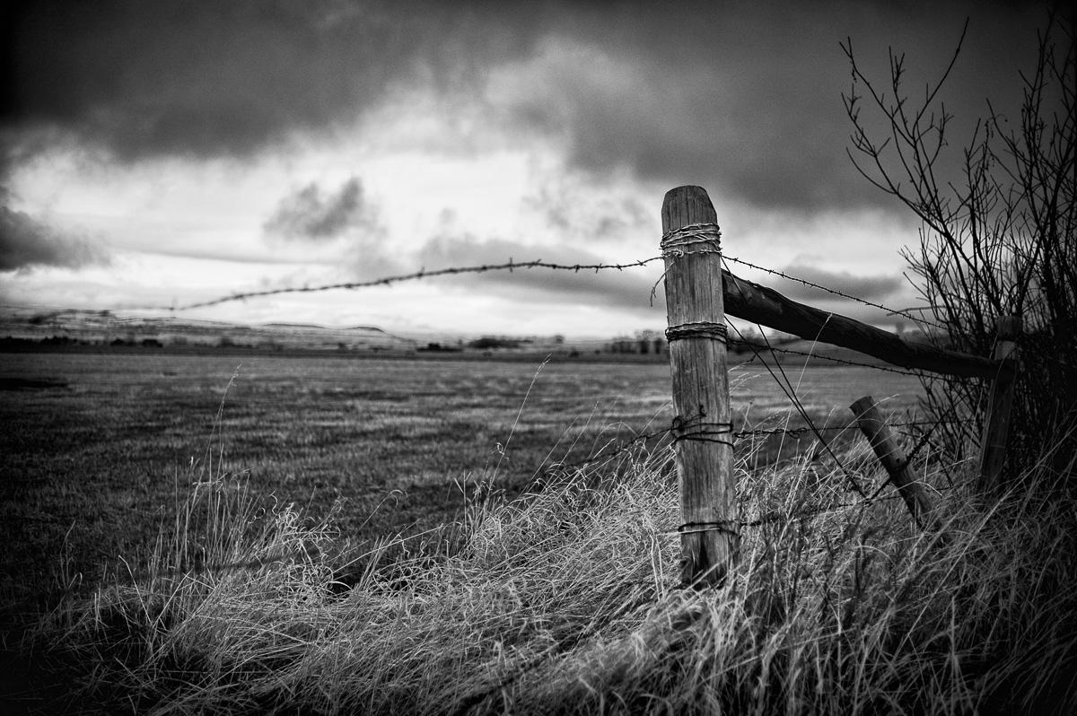 landscapes_montana_fence.jpg