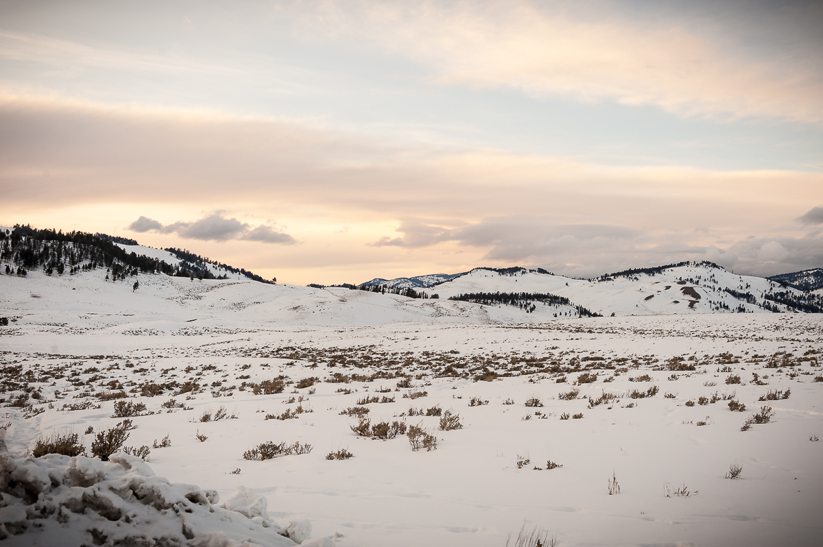 landscapes_yellowstone2.jpg