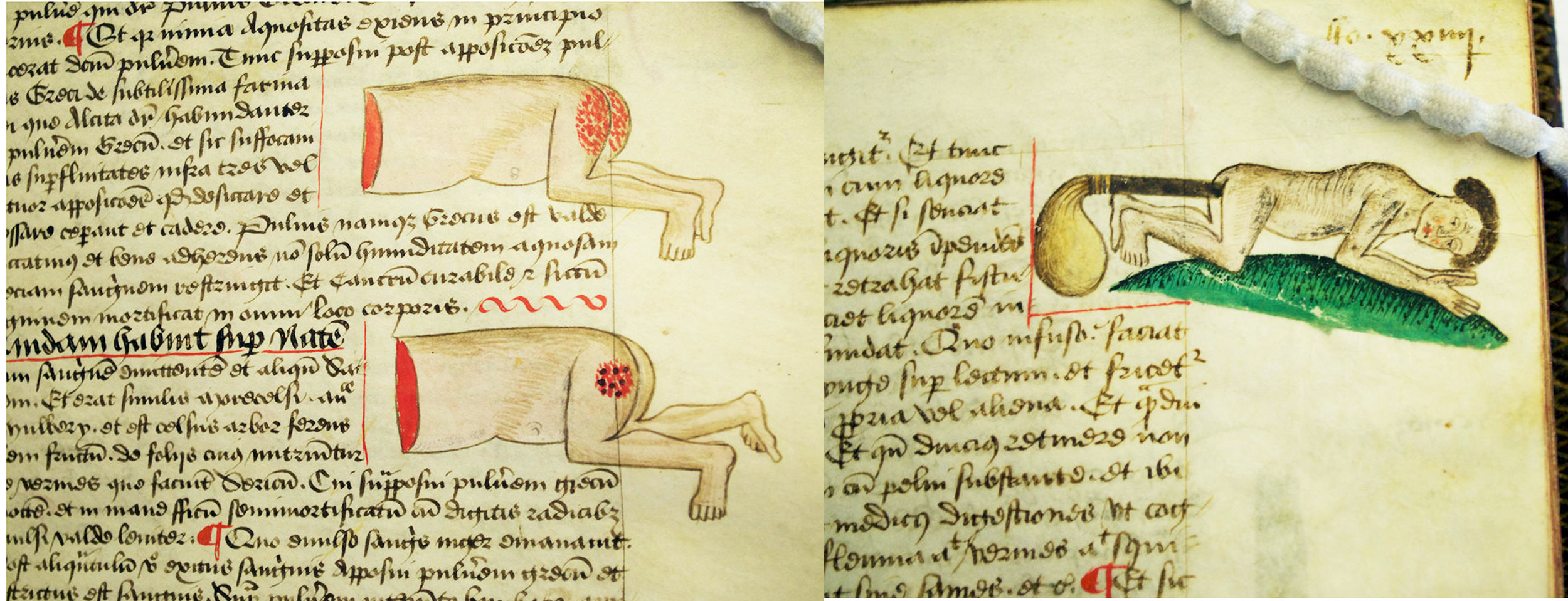 blog medical marginalia1.jpg