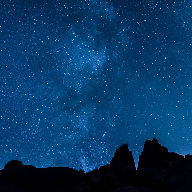 All of the stars #joshuatree #milkyway #member