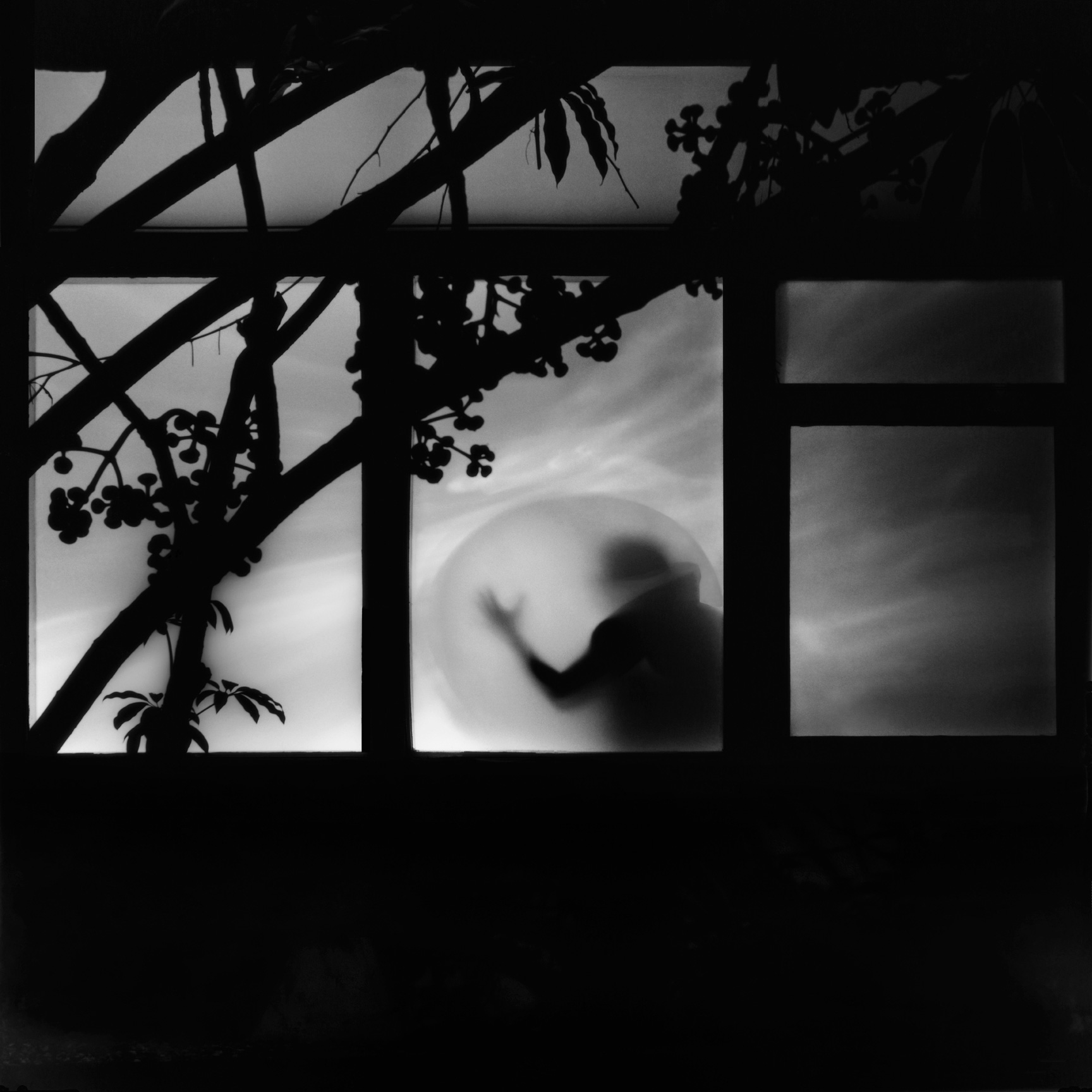 The Moon is a Harsh Mistress,  2009 digital c-print limited edition of five 20 x 20 inches