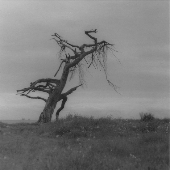 Day Beacon,  2004/2016 silver gelatin print limited edition of five 4.25 x 4.25 inches