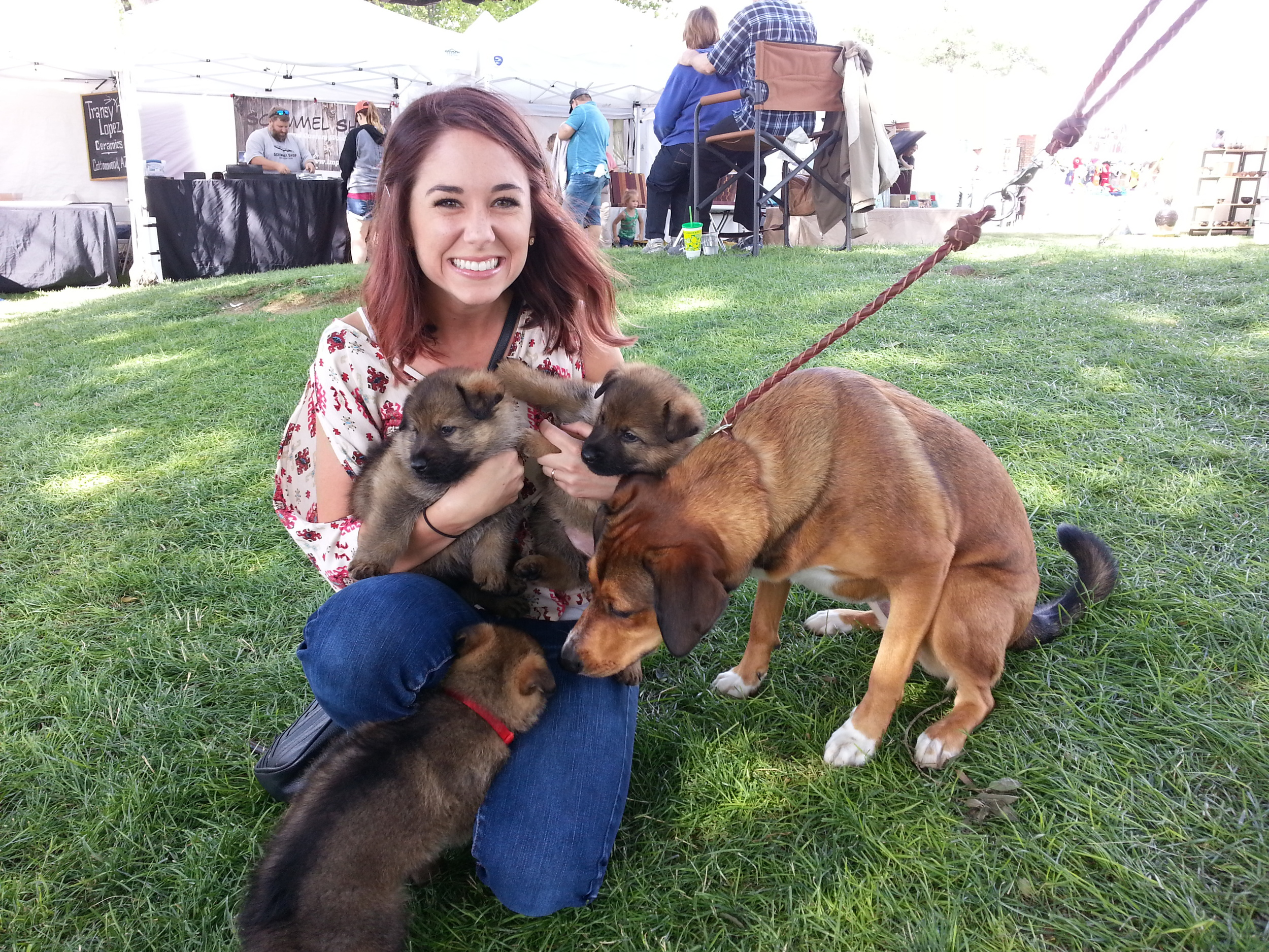 The puppies spent some time socializing with new people and friendly dogs at Art in the Park.