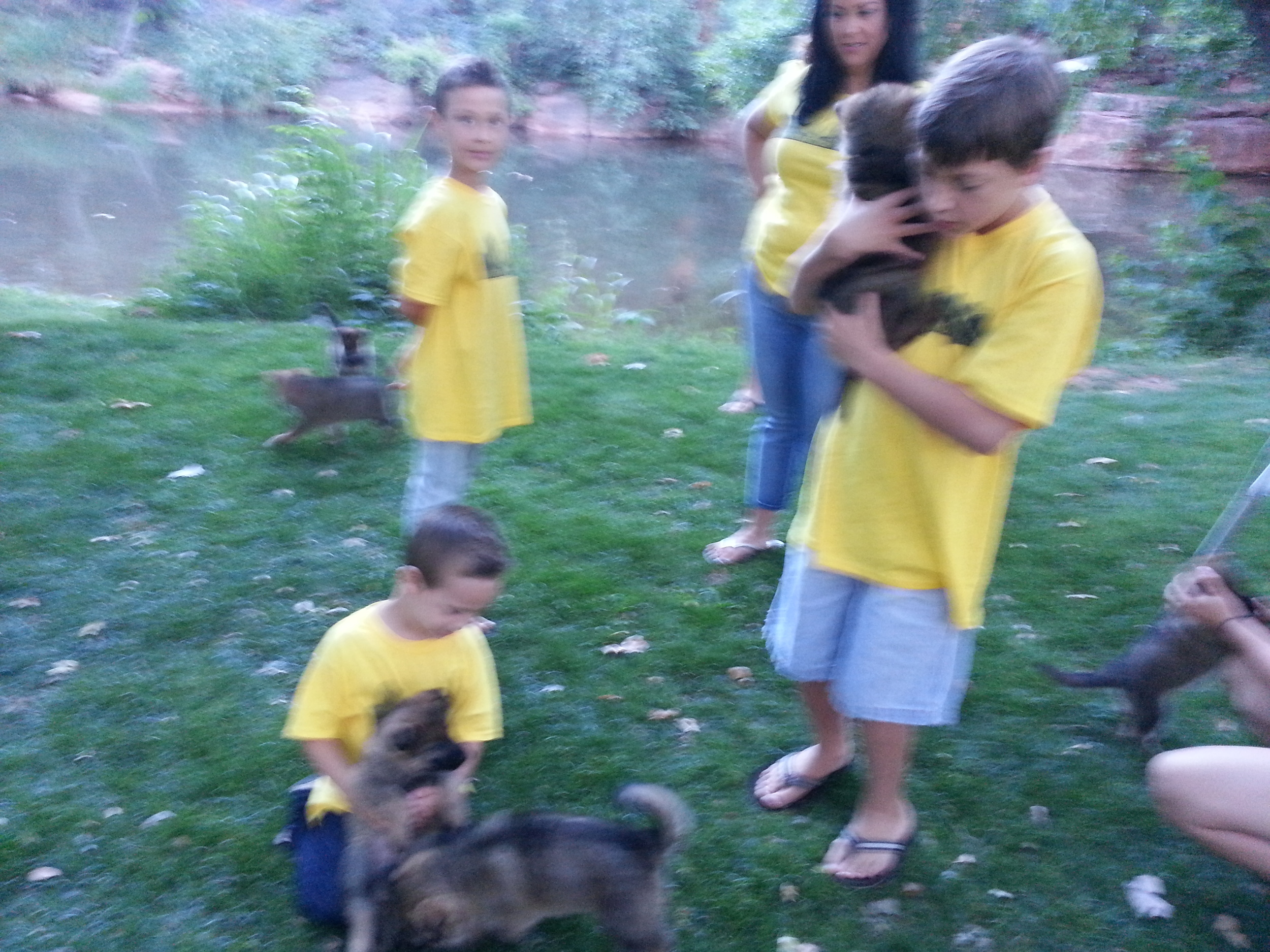While in Sedona we ran into a family reunion. The pups were introduced to toddlers, young children, and adults...all wanting to give them love.