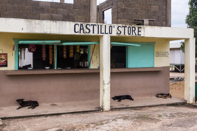 Castillo's Store