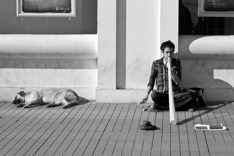 Musician, Istanbul