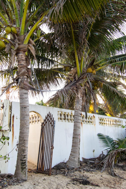 Gate, Vieques