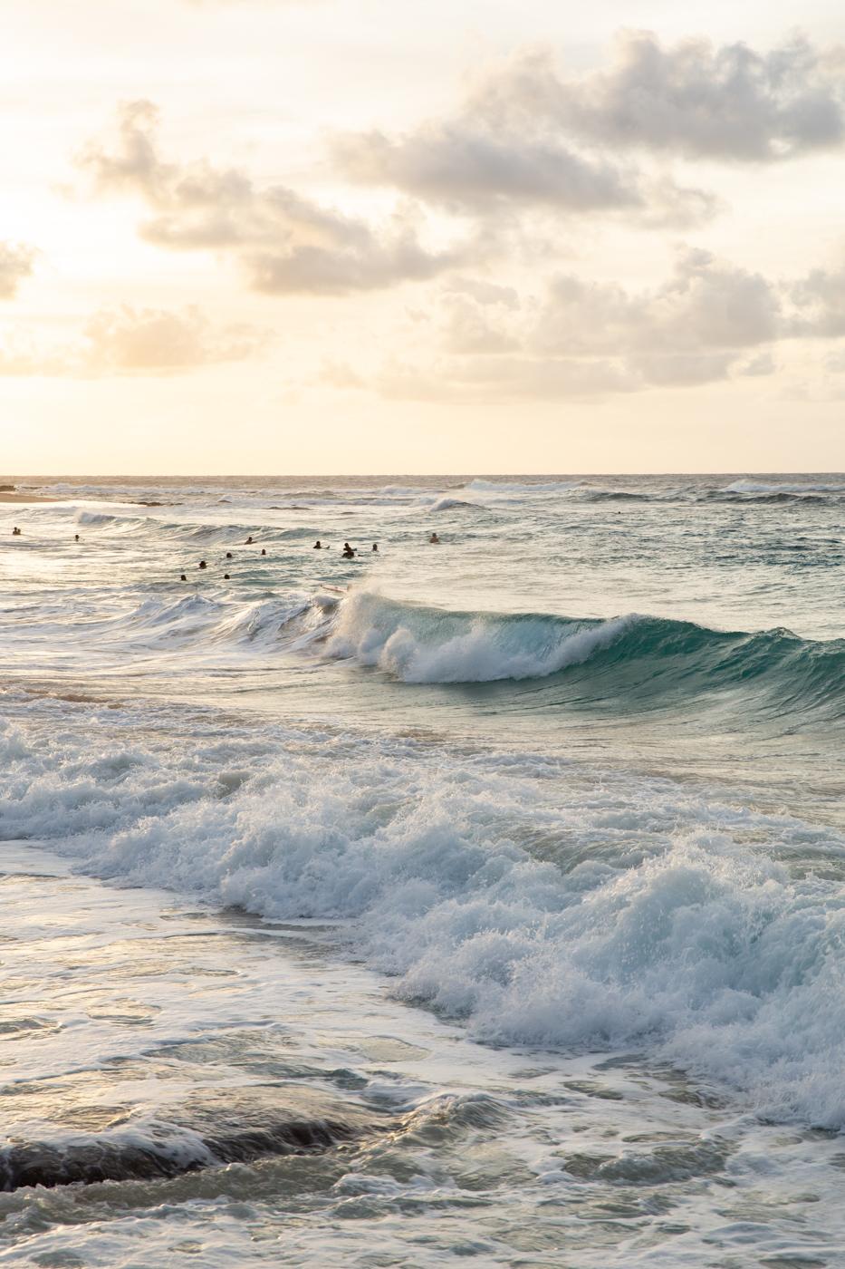 justinhalbert-hawaii-7-2018-422.jpg