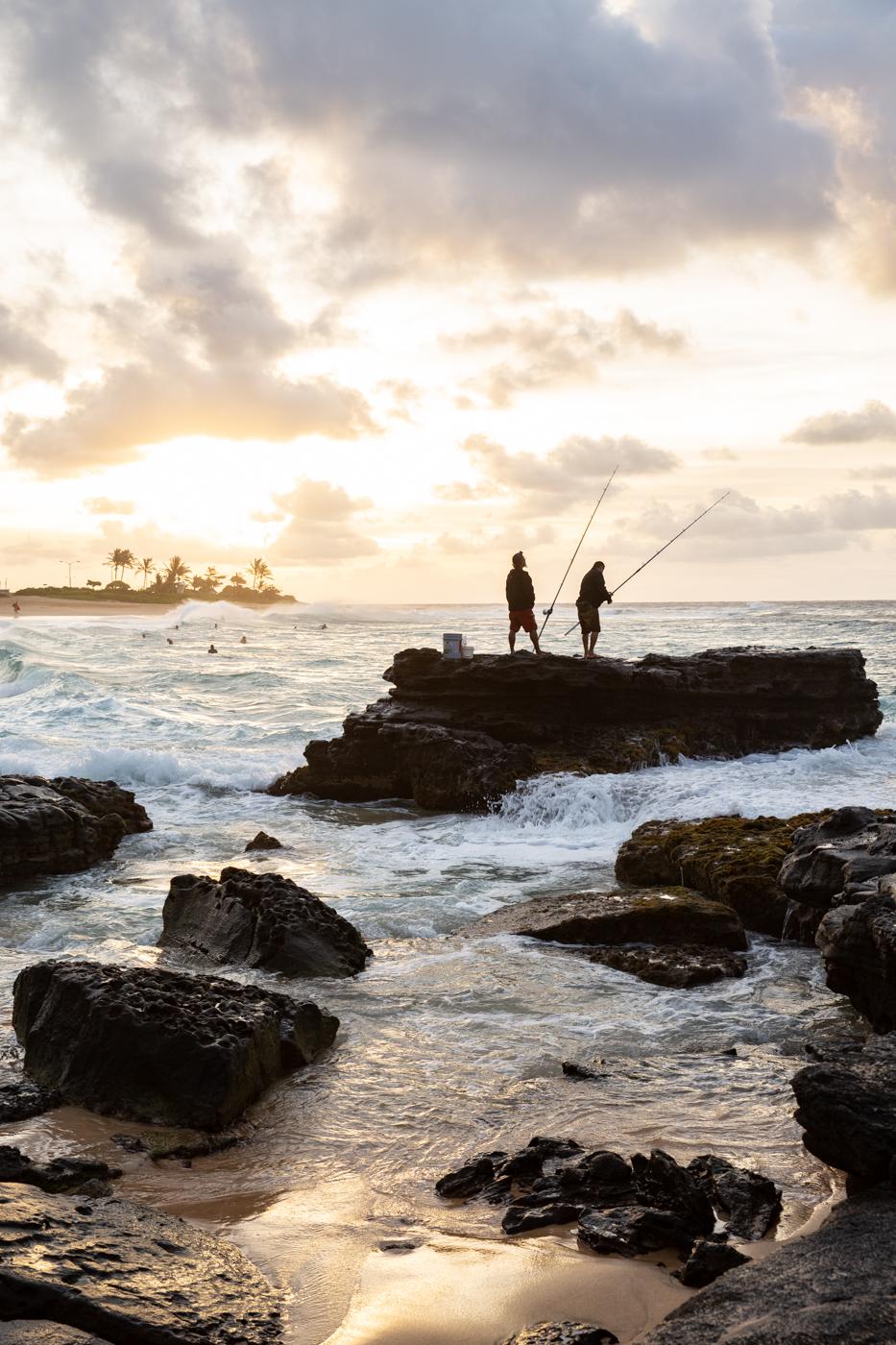 justinhalbert-hawaii-7-2018-397.jpg
