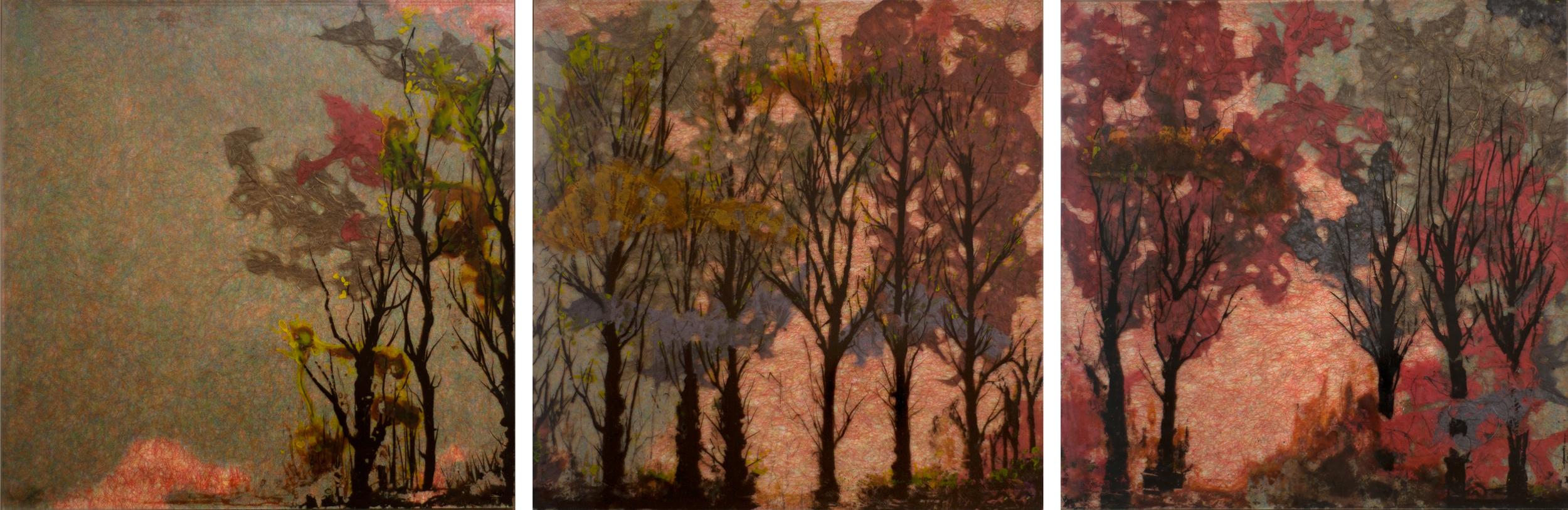 """Triptych Trees"""