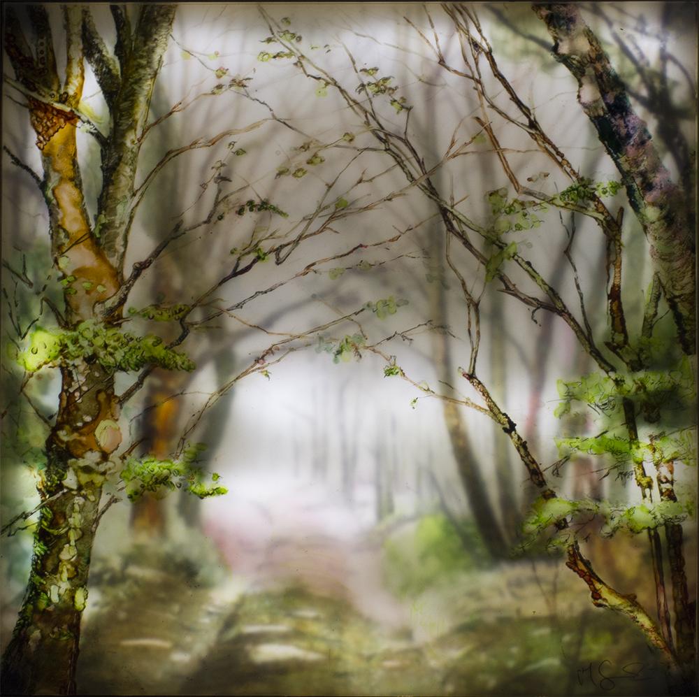 """""""Lyme Tree Avenue"""""""