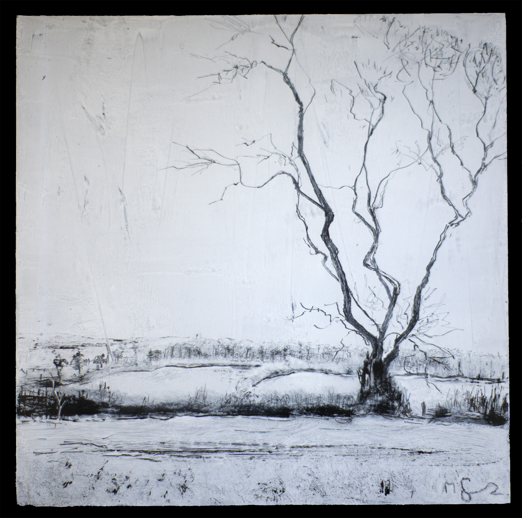 """Lone Tree, Beaminster Down"""