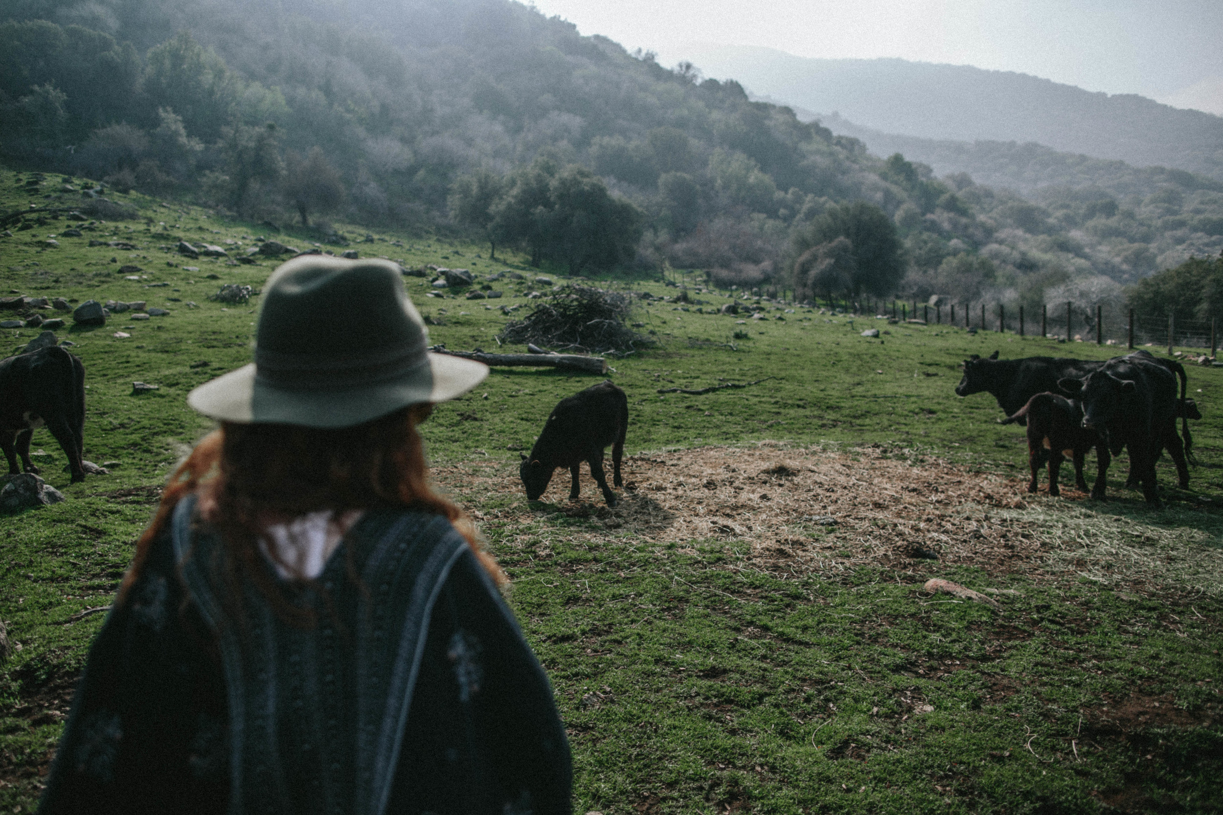 Redwood Ranch Gathering by The Eternal Child // Photographed by Valerie Noell