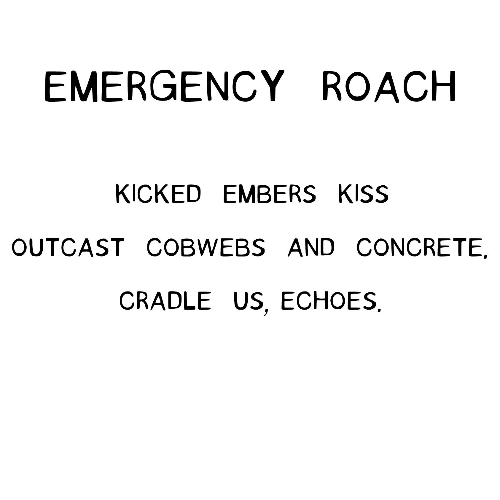emergencyroach.jpg