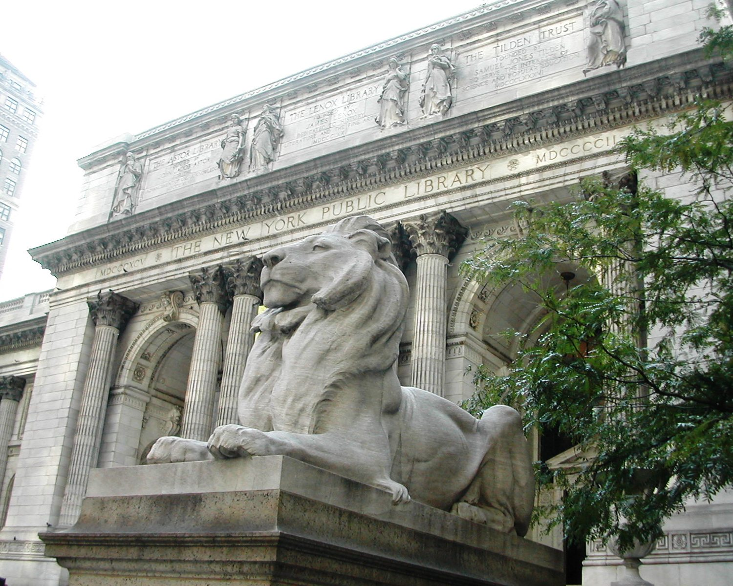 The New York Public Library's iconic lions.