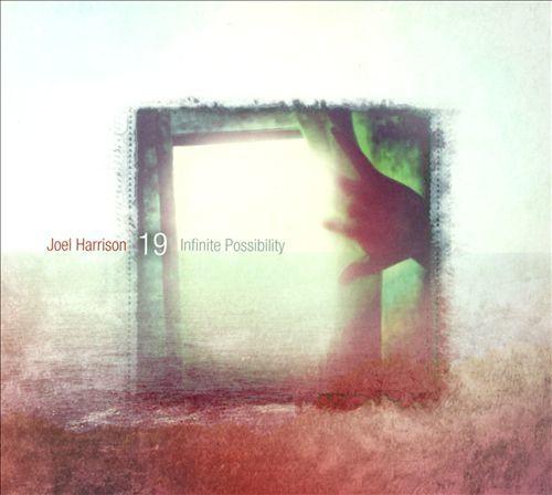 Joel Harrison 19 -  'Infinite Possibility' (2013)