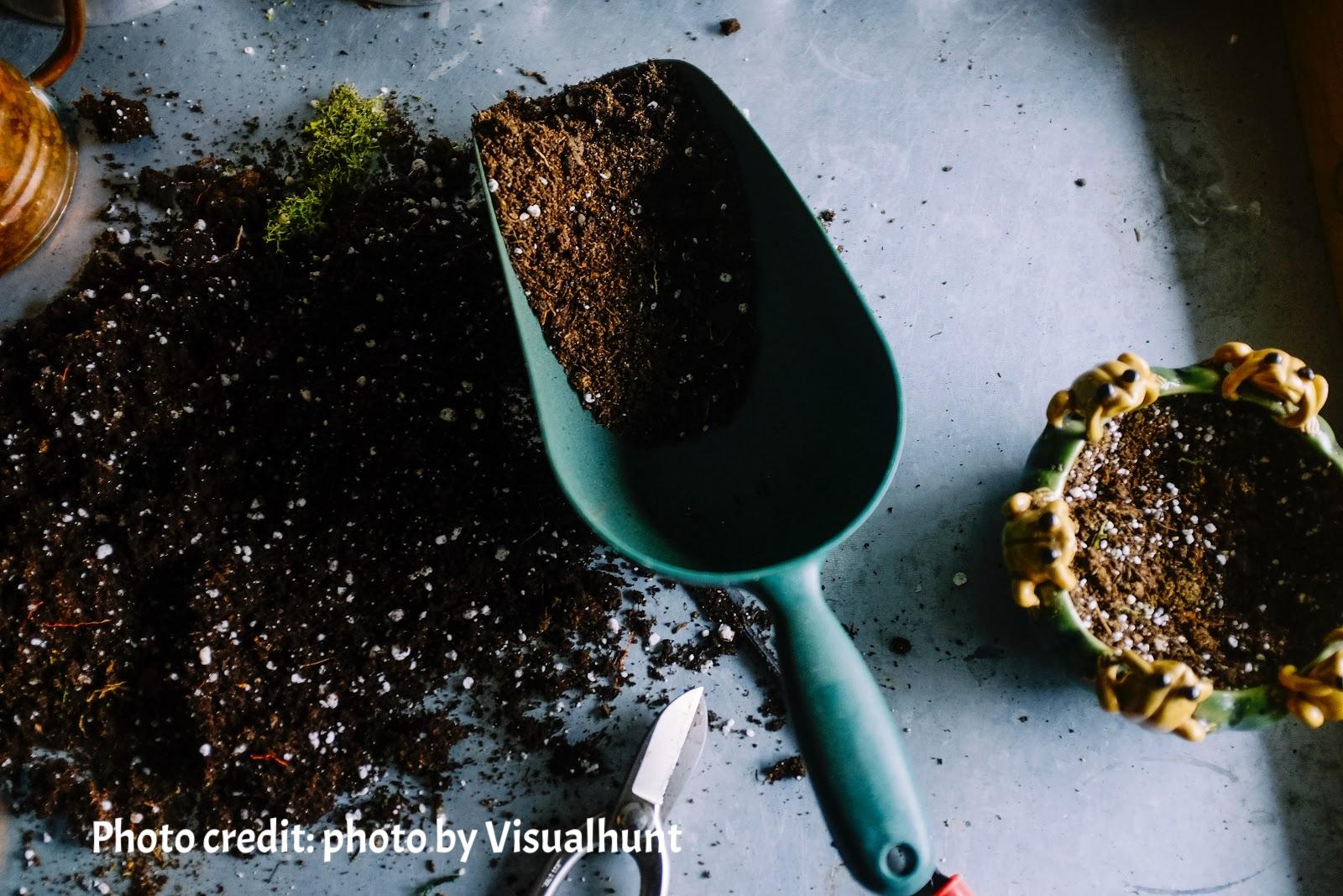 soil preparation.jpg