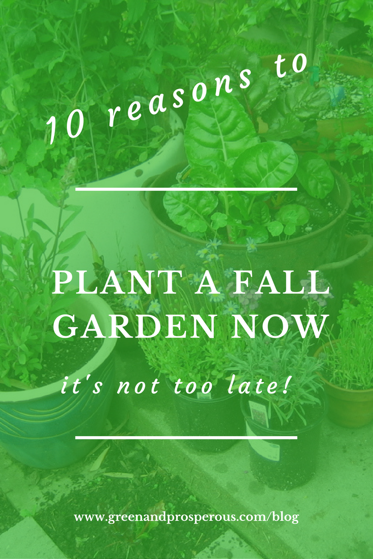 10 Reasons to Plant a Fall Garden Now.png