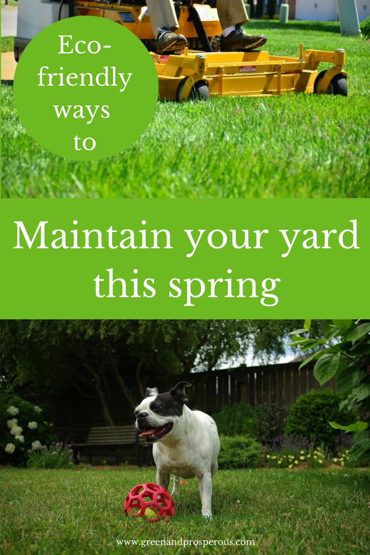 Eco-friendly ways to maintain your yard this spring