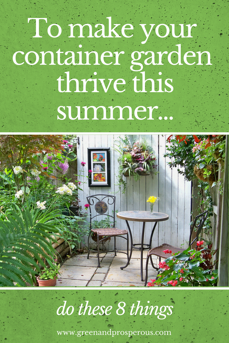 make your container garden thrive this summer